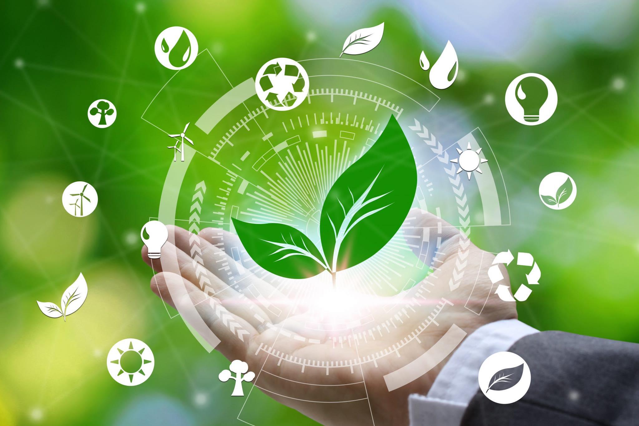 ՄՐՑՈՒՅԹ՝ Green Lane NGO – Առցանց բիզնես-աքսելերացիոն ծրագիր GREENcubator